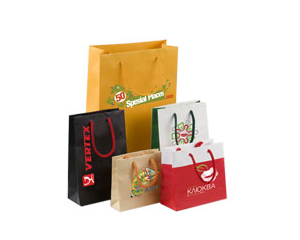 Paper-Shopping-Bags1